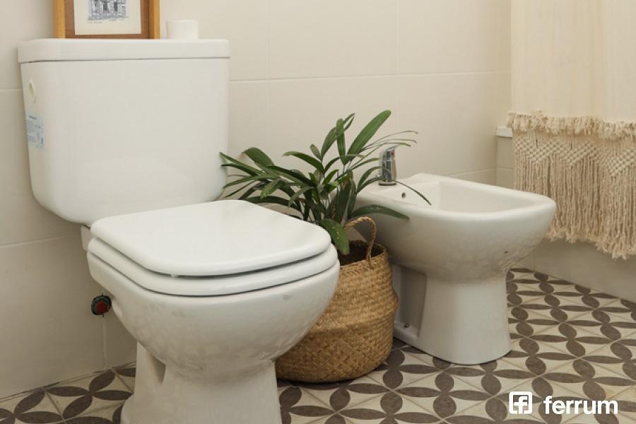 Llegan nuevs capacitaciones gratuitas de Ferrum: inodoro, bidet, zona de duchas y más