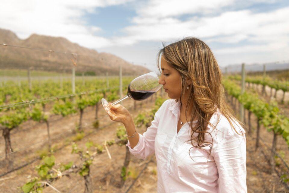 Pyros: un vino de calidad, elegancia y aromas únicos que lo posicionan entre los mejores del mundo